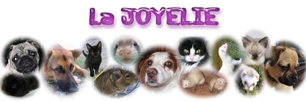 La Joyelie